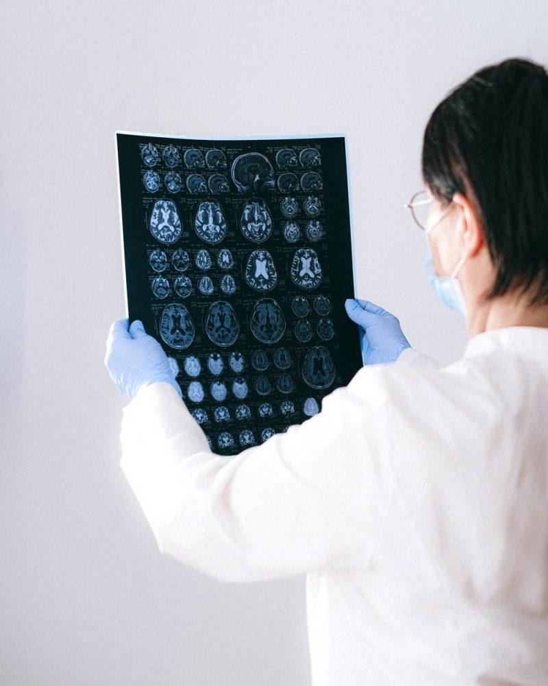 Work Package 3: Gut-brain mechanisms